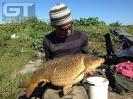Adrian - 29lb 2oz (13.2kg)