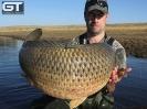 Vlad - 35lb 11oz (16.2kg)