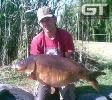 Donovan - 43lb (19.5kg)