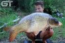Marcel - 40lb 13oz (18.5kg)