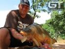 17lb 1oz (7.75kg) Tzaneen 2012
