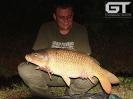 Johann - 18lb (8.16kg)