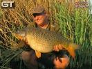Johann - 23lb 13oz (10.8kg)