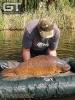 Johann - 39lb 9oz (17.95kg)